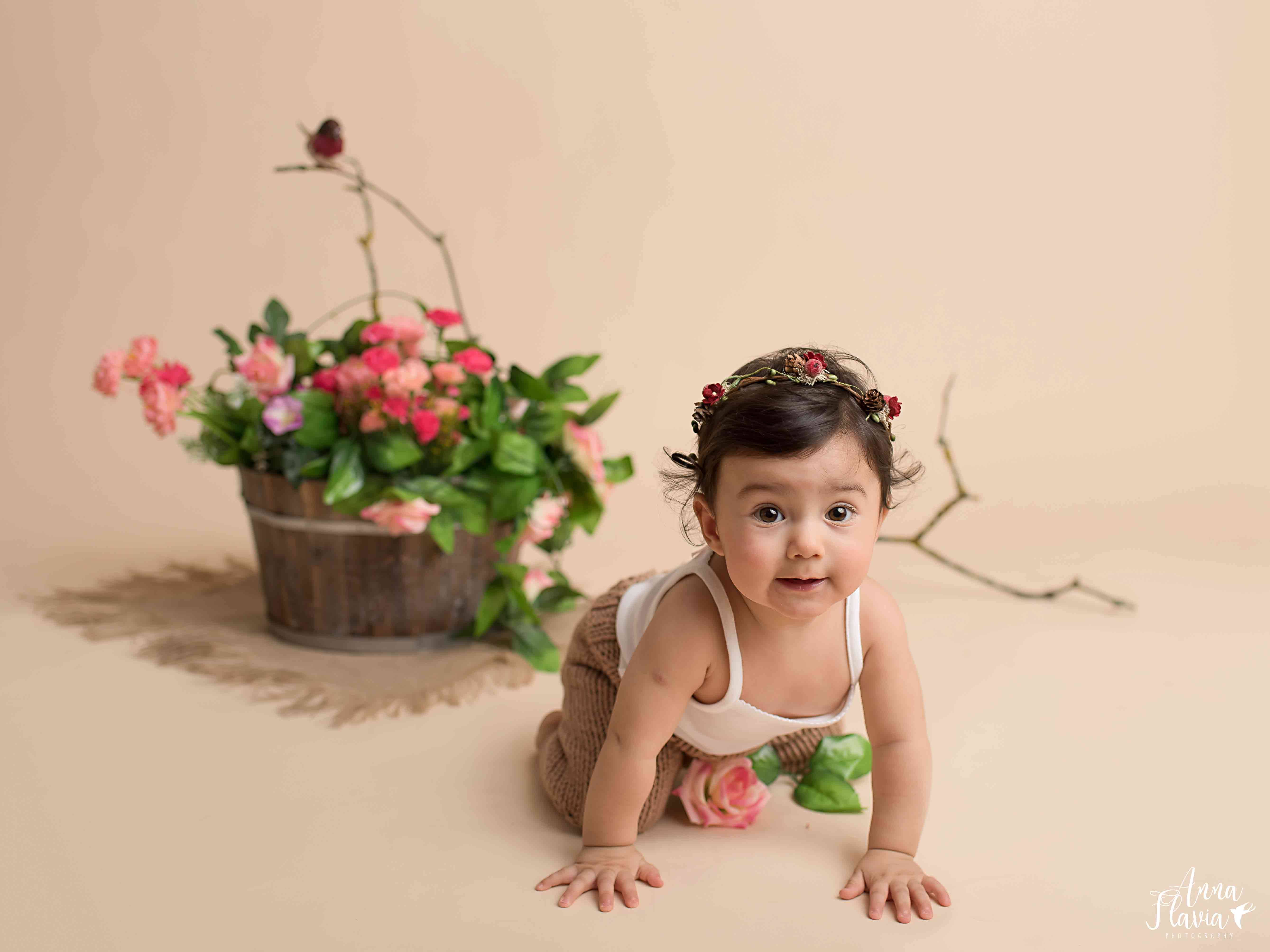 Baby Photography Photo Session